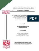 122989813 Origen y Evolucion de Los Hidrocarburos Aromatico