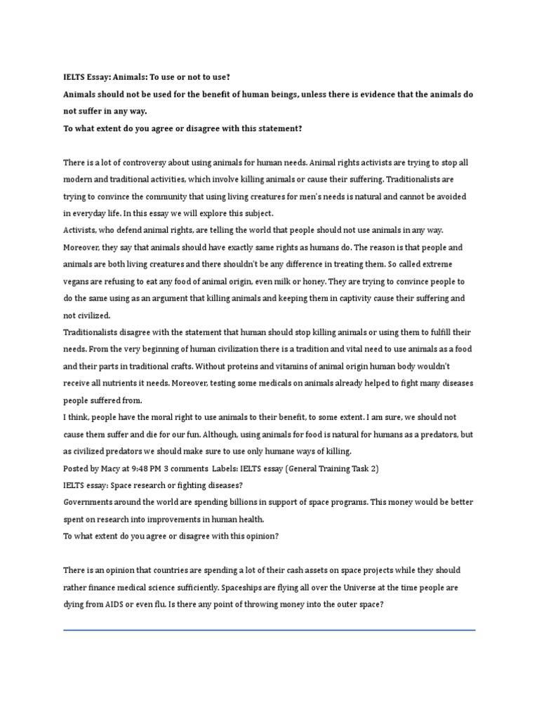 animals rights essay