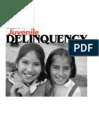 juvenile delinquency midterm essaysjuvenile delinquency