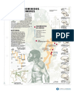 articles-29608_recurso_pdf.pdf