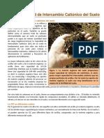 09._La_CIC_del_Suelo[1].pdf