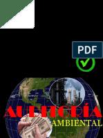 1. AUDITORIA AMB. (1).pptx