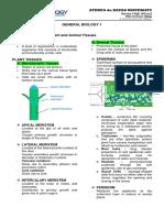 Tissues.pdf