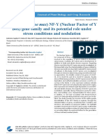 Soybean Glycine Max NF Y Nuclear Factor of Y Box Gene Family and Its Potential Role Under Stress Conditions and Nodulation