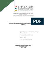 Informe de Practica, Barbara Vivanco.