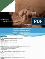 2. Patologia Glandelor Salivare