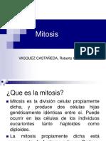 3_mitosis_