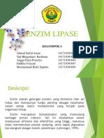 enzim lipase