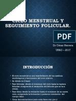 Ciclo Ovarico y Seg Folicular