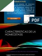 Motivacion Seccion 4.pdf