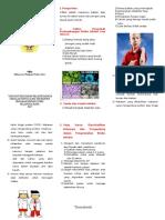 Leaflet Resiko Infeksi.doc