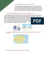 Reconhecer o Papel Do Ciclo Hidrológico Na Manutenção Do Equilíbrio Da Terra