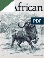 African Assassin.pdf