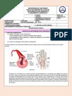 arteriografia jimena rios amaya jueves 04-10-18