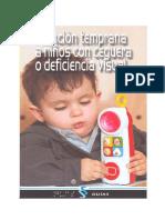 AT ni+¦os con deficiencia visual[1].pdf