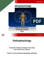 Metabolismo Proteico Bioquimica