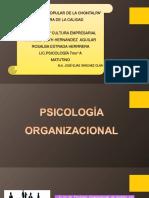psicologia y cultura empresarial.pdf