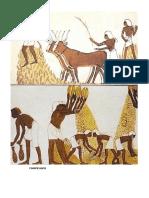 Sociedad Egipto