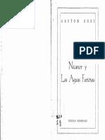 Gastón GORI. Nicanor y Las Aguas Furiosas (novela)