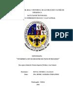 Monografia Interpretacion de Registros de Pozos Petroleros