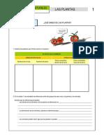 03_LAS_PLANTAS_ALUMNADO.pdf