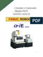 Fanuc manual service
