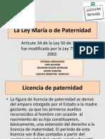 La Ley María o de Paternidad