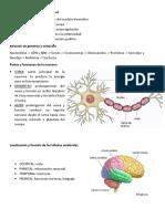 Guía Psicología