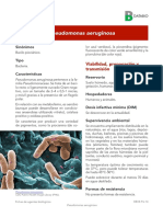 Pseudomonas Aeruginosa 2017