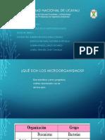 II--caracteristticas de Los Miicroorganismos
