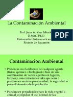la contaminacion ambiental.pdf