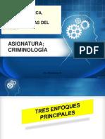 s7_8 Explicacion Psicologica_ Psicosis_criminalidad (1)