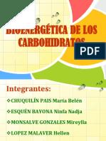 Bioenergetica de Los Carbohidratos