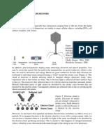 WinterGoldNanoparticles.pdf