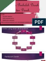 Anatomi Pembuluh Darah Dan Darah