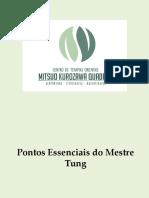 Pontos Essenciais do Mestre Tung.pptx