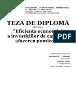 Eficiența Economică a Investițiilor de Capital În Afacerea Pomicolă