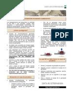 FICHA PREV. PICADURA DE GARRAPATAS.pdf