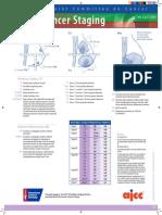 BreastMedium.pdf