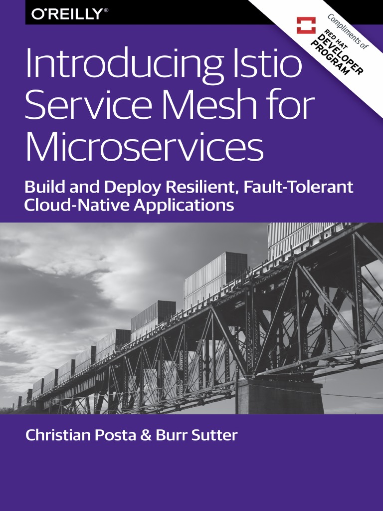Istio Mesh for Microservices r1 | Software Framework