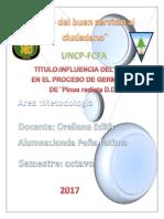 Metodologia Proyecto Final