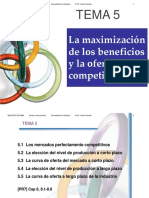 Tema5MicroI.pdf