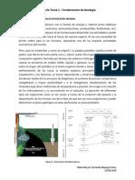 Artículo La Geología Del Petróleo en Nuestro Mundo