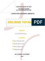 256914732-SOLIDOS-TOTALES-INFORME.docx