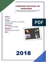 POLIMEROS-carlos.pdf