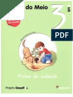 245374056-Fichas-de-Avaliacao-Desafios-Estudo-Meio-3ºAno.pdf