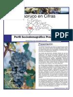 Perfil Sociodemográfico Provincial, 2008 (1)