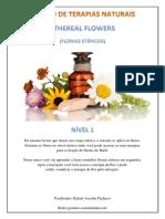Ethereal Flowers Nível 1