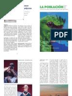 Diario Quillon