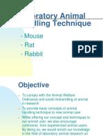 Laboratory (Mice) Handling